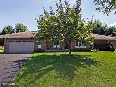 Lovettsville Single Family Home For Sale: 13036 Berlin Turnpike