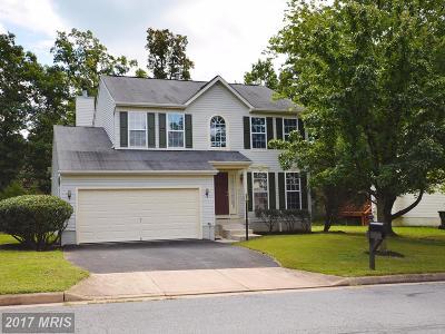 Loudoun Single Family Home For Sale: 22986 Rock Hill Road