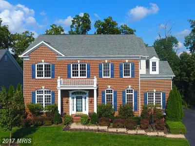 Loudoun Single Family Home For Sale: 43038 Waters Overlook Court
