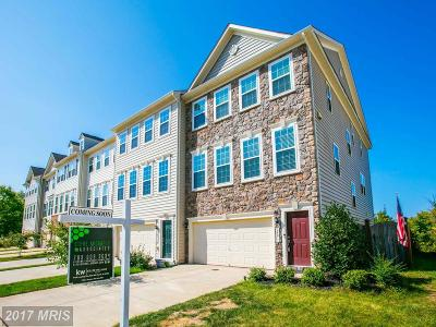 Chantilly Townhouse For Sale: 24811 Mason Dale Terrace