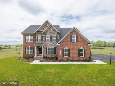 Loudoun Single Family Home For Sale: 14491 Falconaire Place