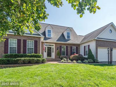 Ashburn Single Family Home For Sale: 20984 Deer Run Way