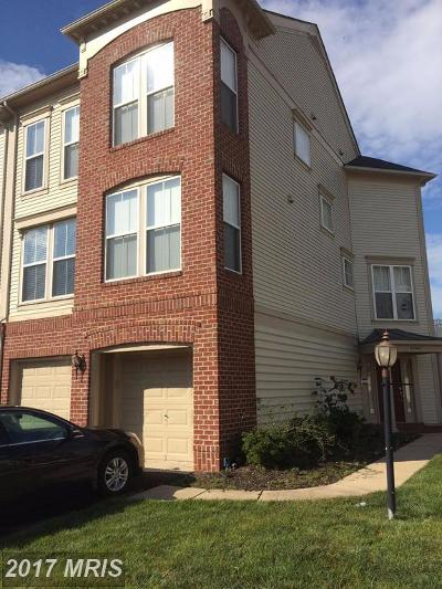 Ashburn Rental For Rent: 23405 Spice Bush Terrace