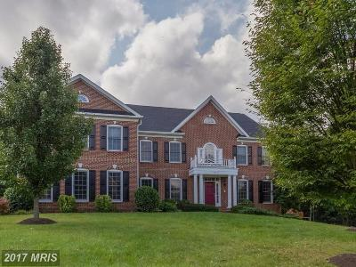 Loudoun Single Family Home For Sale: 42637 Cochrans Lock Drive