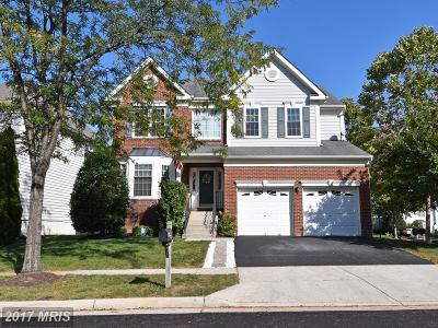 Loudoun Single Family Home For Sale: 25478 Gimbel Drive