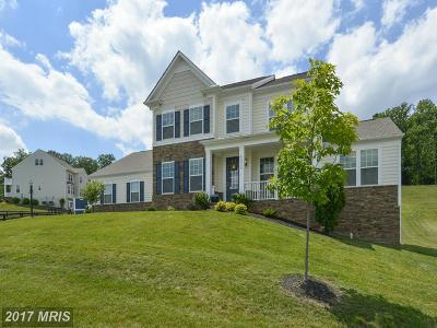 Loudoun Single Family Home For Sale: 41714 Gawthorpe Lane