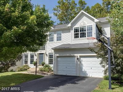 Purcellville Single Family Home For Sale: 221 E Skyline Drive