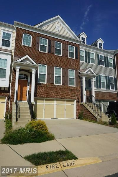Chantilly Rental For Rent: 43552 White Cap Terrace