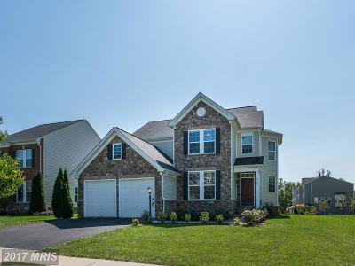 Ashburn Single Family Home For Sale: 42451 Nickens Place