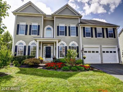 Loudoun Single Family Home For Sale: 42883 Glyndebourne Court