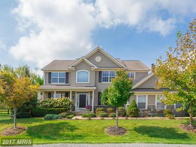 Loudoun Single Family Home For Sale: 12003 Grassy Knoll Circle