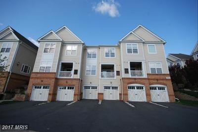 Ashburn Rental For Rent: 43935 Hickory Corner Terrace #113