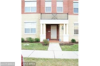 Leesburg Rental For Rent: 43601 McDowell Square #A1204