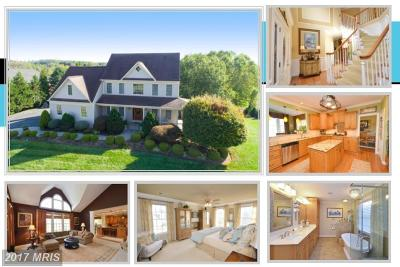 Loudoun Single Family Home For Sale: 14550 Nina Court