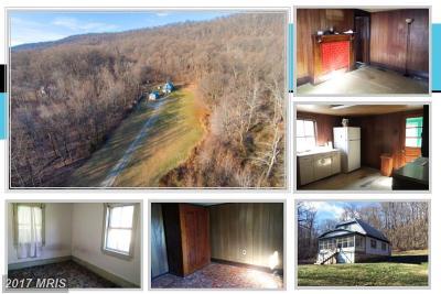 Loudoun Single Family Home For Sale: 13413 Mountain Road