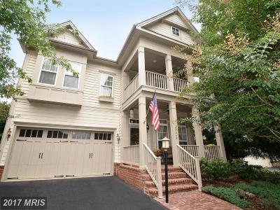 Loudoun Single Family Home For Sale: 42662 Explorer Drive