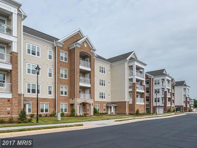 Ashburn Condo For Sale: 20515 Little Creek Terrace #207