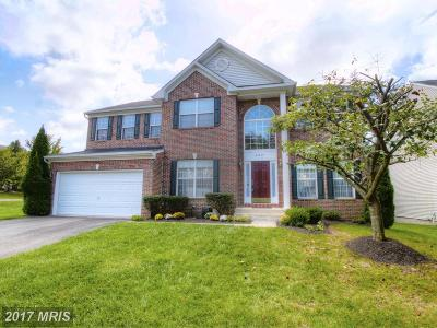 Loudoun Single Family Home For Sale: 47415 Halcyon Place