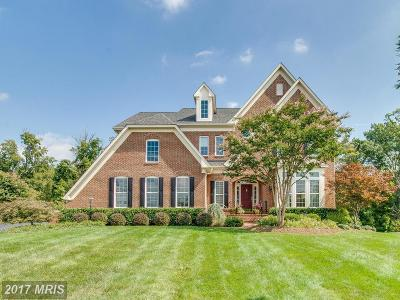 Broadlands VA Single Family Home For Sale: $1,069,000