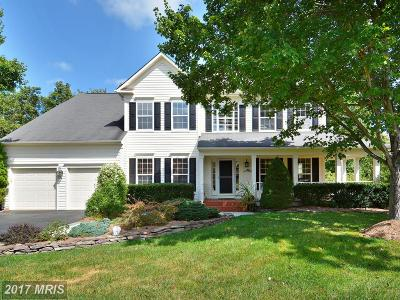 Loudoun Single Family Home For Sale: 43266 Meadowood Court