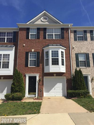 Leesburg Rental For Rent: 226 Hawks View Square SE