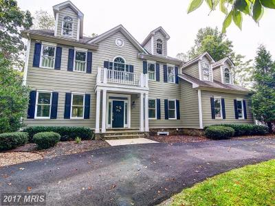 Loudoun Single Family Home For Sale: 37059 Cardigan Place