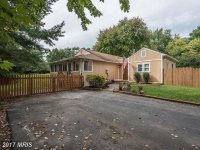 Loudoun Single Family Home For Sale: 38 Main Street