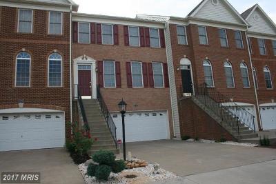 Ashburn Rental For Rent: 22528 Scattersville Gap Terrace