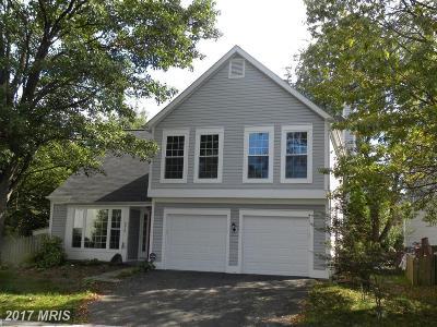 Leesburg Rental For Rent: 378 Deerpath Avenue SW