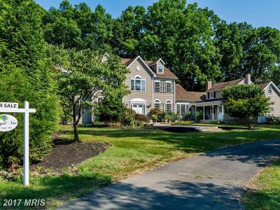 Leesburg Single Family Home For Sale: 17944 Canby Road