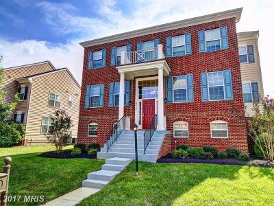 Leesburg Single Family Home For Sale: 43181 Fleur Drive