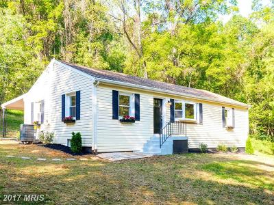 Leesburg Single Family Home For Sale: 13193 Taylorstown Road