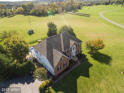 Leesburg Single Family Home For Sale: 39261 Logans Creek Lane