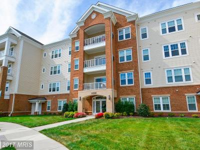 Ashburn Condo For Sale: 20580 Hope Spring Terrace #304