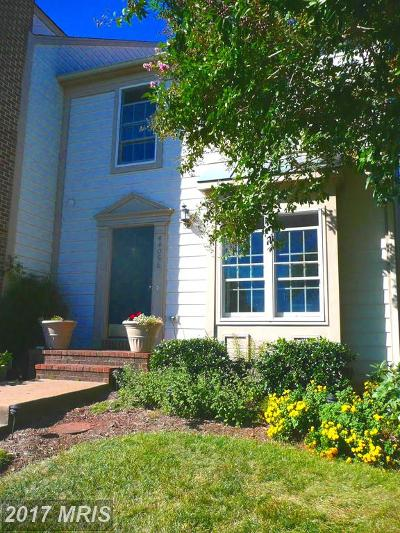 Ashburn Townhouse For Sale: 44056 Laceyville Terrace