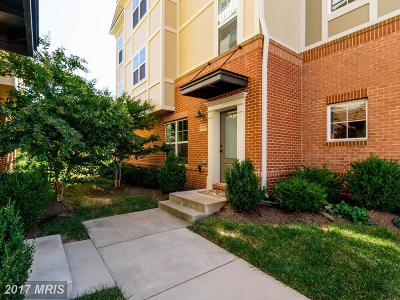 Ashburn Townhouse For Sale: 22415 Verde Gate Terrace