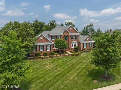Ashburn Single Family Home For Sale: 43164 Tall Pines Court