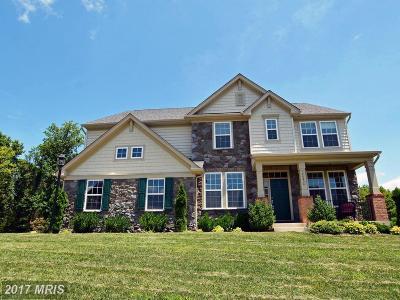 Aldie Rental For Rent: 40454 Aldie Springs Drive