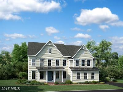 Aldie Single Family Home For Sale: Dahlia Manor Place