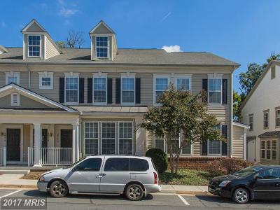 Ashburn Townhouse For Sale: 20252 Macglashan Terrace
