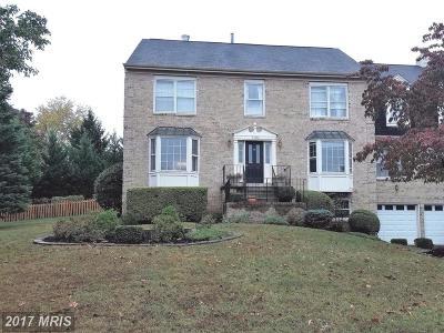 Ashburn Single Family Home For Sale: 20376 Altavista Way