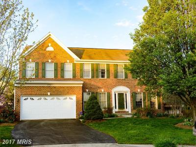 Ashburn Single Family Home For Sale: 43336 Logmill Court