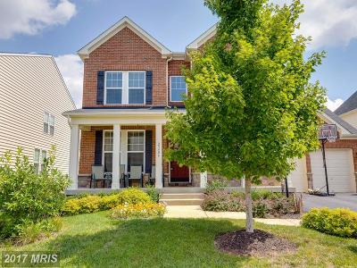 Ashburn Single Family Home For Sale: 23406 Virginia Rose Place