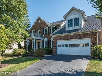Ashburn Farm Single Family Home For Sale: 43447 Thistlewood Court