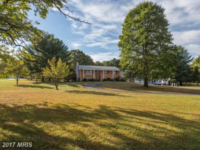 Leesburg Single Family Home For Sale: 40617 Woodside Place