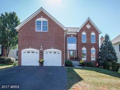 Single Family Home For Sale: 43347 La Belle Place