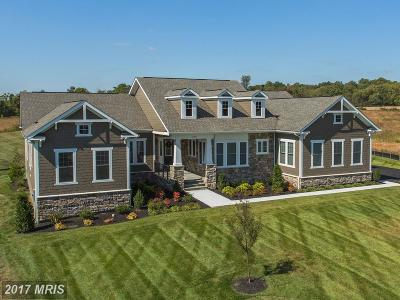 Ashburn Single Family Home For Sale: 22971 Homestead Landing Court