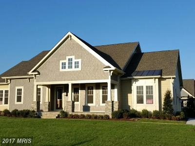 Aldie Single Family Home For Sale: 23533 Whiteheart Hickory Lane