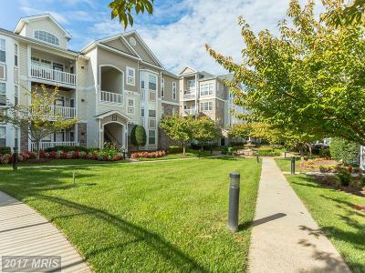 Leesburg Condo For Sale: 506 Sunset View Terrace SE #304