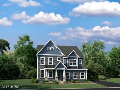 Loudoun Single Family Home For Sale: Amesfield Place
